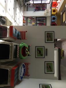 Pets Well Clinic islamabad