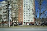 Среди цветов, Харьковская улица на фото Тюмени
