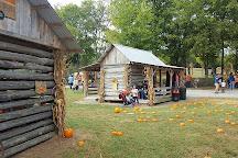 Walden Pumpkin Farm, Smyrna, United States