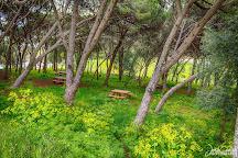 Parque Florestal de Monsanto, Lisbon, Portugal
