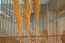 Mitsuo Aida Museum, Chiyoda, Japan