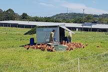 The Farm Byron Bay, Byron Bay, Australia