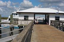 Sapelo Island National Estuarine Research Reserve, Sapelo Island, United States
