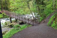 Lacamas Heritage Trail, Camas, United States