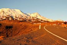 Mountain Bike Station, Ohakune, New Zealand