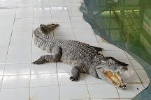 Maerim Crocodile Show, Mae Rim, Thailand