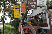 The Fossil Shop Inc, Drumheller, Canada