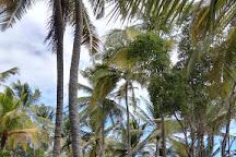 Panamax Martinique, Trois-Ilets, Martinique