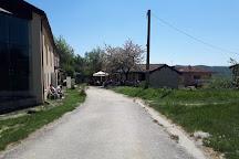 Strada Romantica delle Langhe e il Roero, Bossolasco, Italy