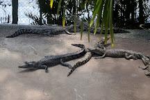 Crocodylus Park, Darwin, Australia