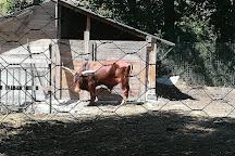 Bioparco Faunistico Zoo D'Abruzzo, Castel di Sangro, Italy