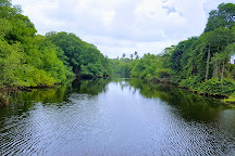 Nariva Swamp, Trinidad, Trinidad and Tobago