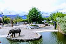 Knies Kinderzoo Rapperswil, Rapperswil, Switzerland