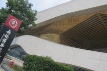 Wuxi Museum, Wuxi, China