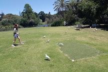 Punting On The Lake, Melbourne, Australia