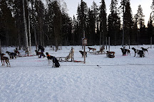 All Huskies, Kittila, Finland