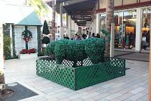 The Falls Shopping Center, Miami, United States