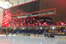 Dubai Ice Rink, Dubai, United Arab Emirates