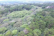 Bosque de la Hoja, Heredia, Costa Rica