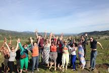 Sonoma Wine Tours, Sonoma, United States