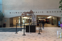 Milwaukee Public Museum, Milwaukee, United States