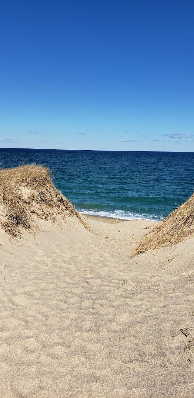 Dune Shacks Trail