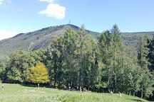 Sentiero Spirito del Bosco, Canzo, Italy