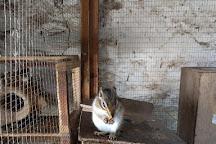 Monreith Animal World, Newton Stewart, United Kingdom