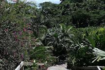 Flora Tropica Gardens, Savusavu, Fiji