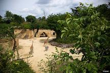 Bioparc de Doue-la-Fontaine, Doue-la-Fontaine, France