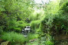 Bronte Waterfall, Haworth, United Kingdom