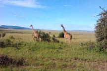 Kenya tours and safaris, Nairobi, Kenya