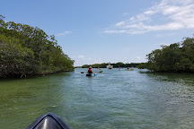 Kayak Adventures Key West, Key West, United States