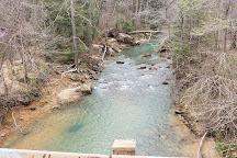 Sipsey Wilderness, Alabama, United States