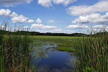 Great Meadows National Wildlife Refuge, Concord, United States