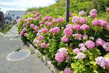 Itami Sky Park, Itami, Japan