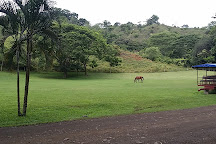 The Park at Ocean Ranch, Jaco, Costa Rica