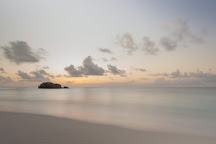 Cousin, Cousin Island, Seychelles