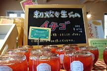 Ena Gin no Mori, Ena, Japan