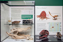 University of Aberdeen Zoology Museum, Aberdeen, United Kingdom
