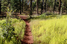 Country Club Trail, Pinetop-Lakeside, United States