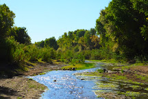 Hassayampa River Preserve, Wickenburg, United States