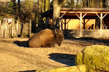 Tierpark Nordhorn, Nordhorn, Germany