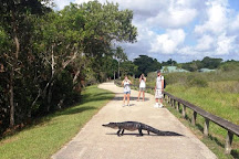 Tour The Glades - Private Wildlife Tours, Everglades City, United States