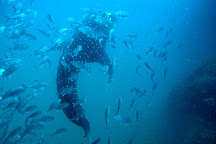 Haad Yao Divers, Ko Pha Ngan, Thailand