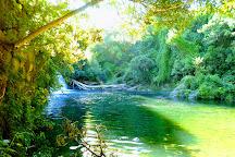 Maraetotara Falls, Havelock North, New Zealand