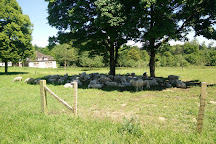 Le Cez Sheepfold National De Rambouillet, Rambouillet, France