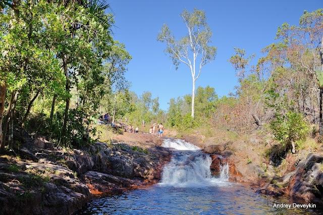 Surprise Creek Falls Camping Area