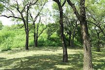 Shenyang Dongling Park, Shenyang, China