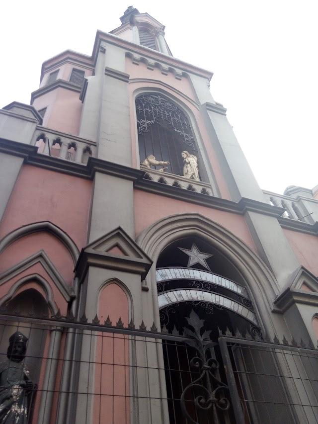 San Pedro Church - Good Shepherd Convent